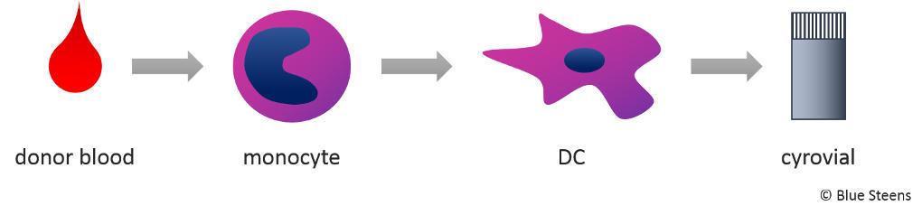 Immunicum – Scalable Personalised Cancer Immunotherapy