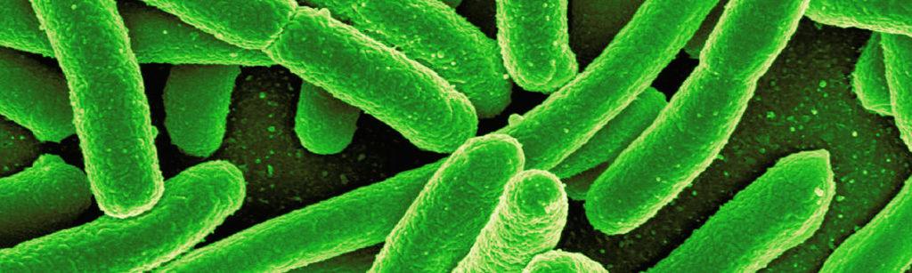 Economics to boost antibiotics development